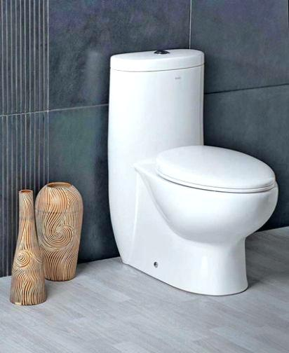 10-Inch Rough-in Toilets Review