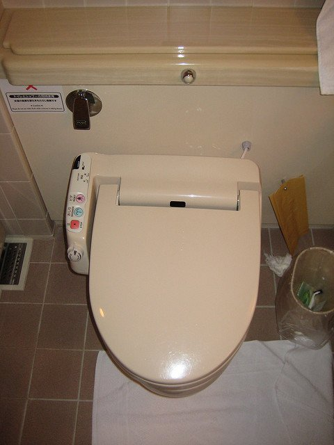 Top 8 Best Bidet Toilet Seats For The Money In 2019 Reviews