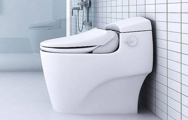 Bidet Toilet Seats Buying Guide