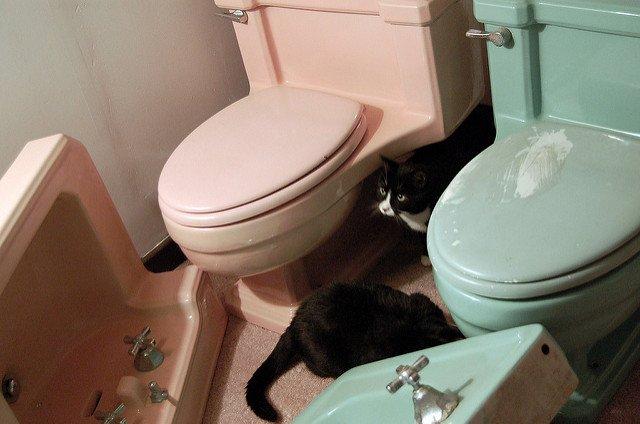 Best Corner Toilet Buying Guide