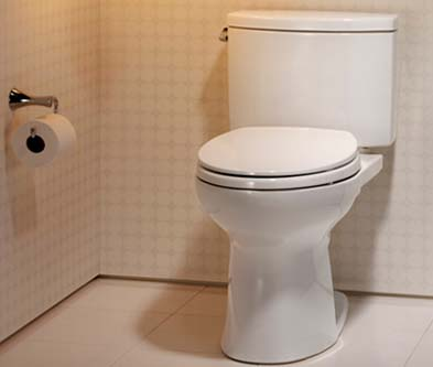 Toto Drake II Review – Best Toilet Brand Of 2021