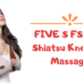 FIVE S FS8801 Shiatsu Kneading Massager